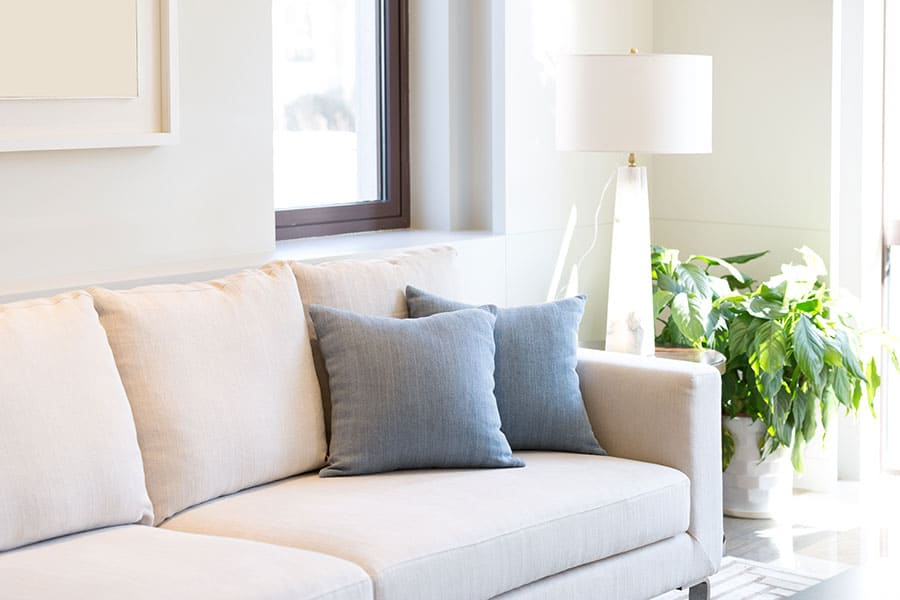 What Is in Sofa Cushions